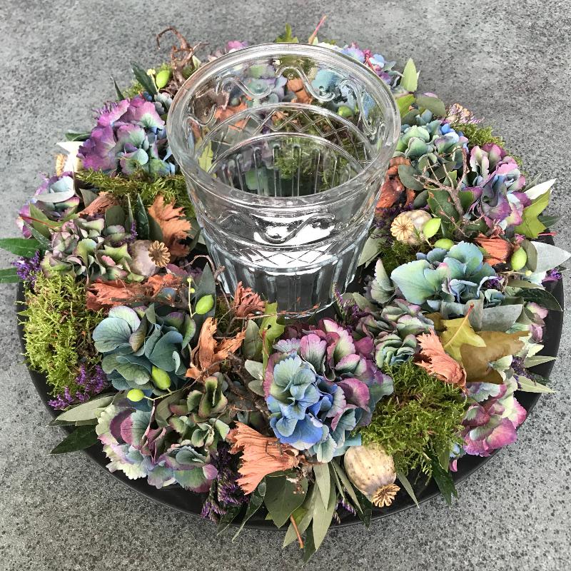 Hortensia- Hydrangea