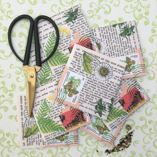 Zaadzakjes – Seed sachets